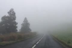 In den Wolken, Straße auf Sao Miguel