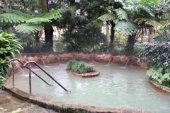 Parque Terra Nostra, Jacuzzi