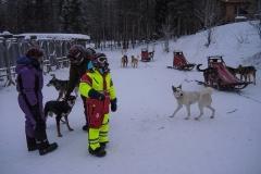 Kurz vor Start der Hundeschlittentour