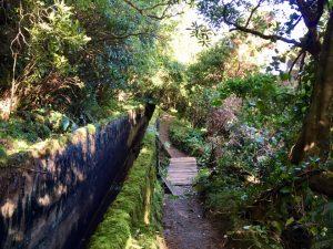Wanderweg am Wasserkanal