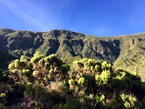 Wanderweg Azoren